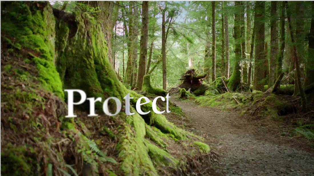 how to protect forest A reserved forest (also called reserve  at present, reserved forests and protected forests differ in one important way: rights to all activities like hunting.